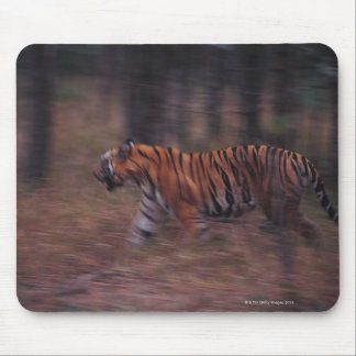 Tiger Walking through Forest Mouse Pad