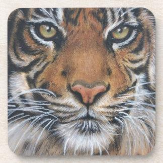 Tiger Wildlife Animal art Coaster