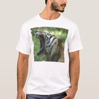 tiger yawn T-Shirt