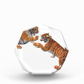 Tiger's Challenge