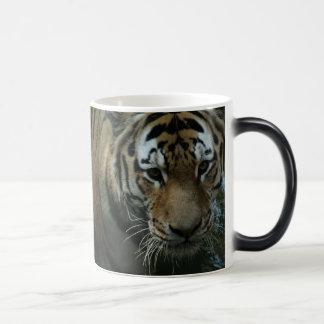 Tiger's Eye Magic Mug