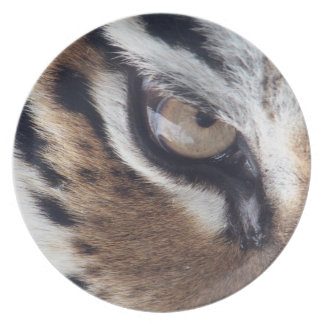 tigers eye plates