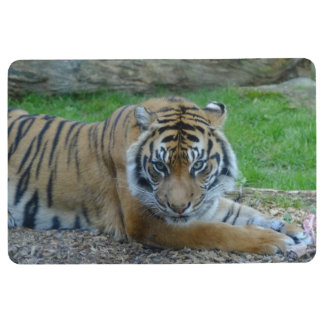 Tiger's Gaze Floor Mat