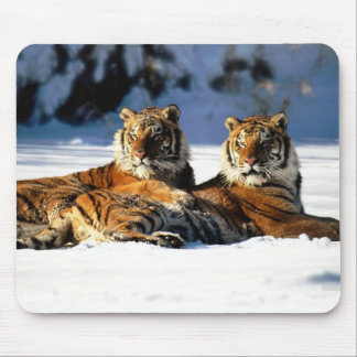 tigers in snow mouse pad