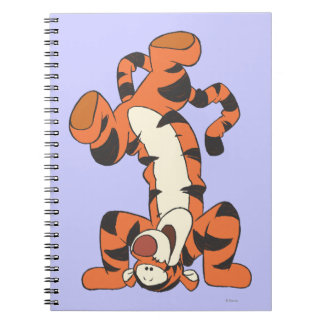 Tigger 4 notebook