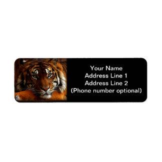 Tigre Étiquettes D'adresse Retour