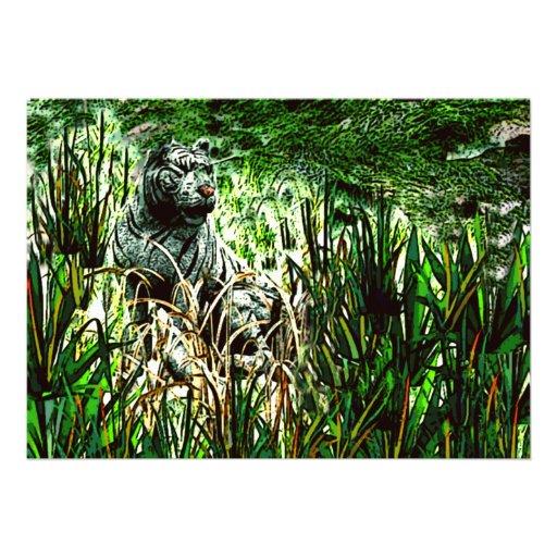Tigre blanc faire-part