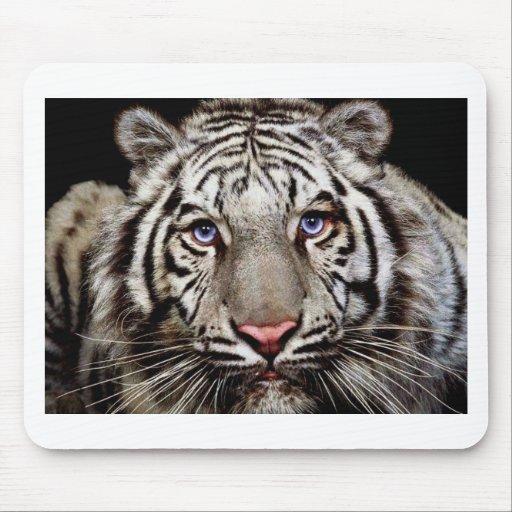 Tigre blanc tapis de souris