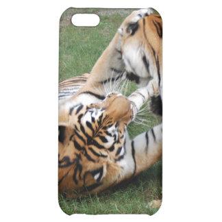 Tigre de Bengale i