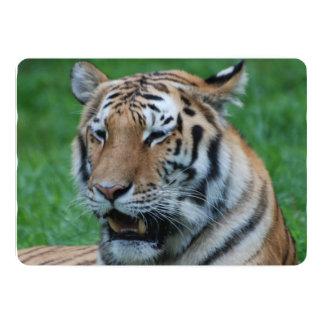 Tigre de grognement carton d'invitation  12,7 cm x 17,78 cm