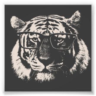 Tigre de hippie avec des verres photo