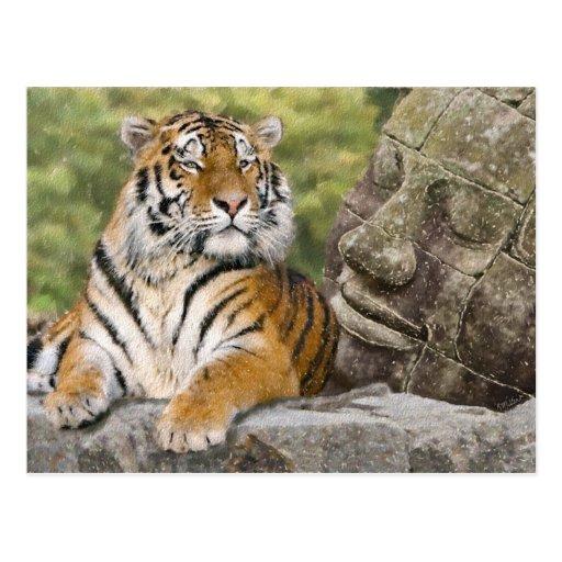 Tigre et le Bouddha Carte Postale