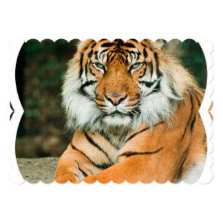 Tigre orange carton d'invitation  12,7 cm x 17,78 cm
