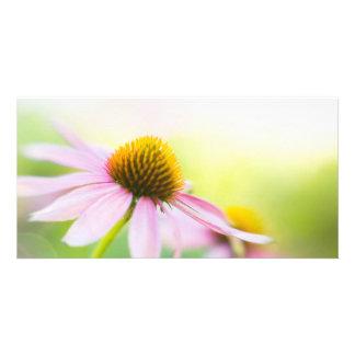 Til Sunbeams Find You Card