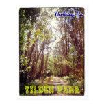 Tilden Park hiking path postcard