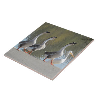 Tile - Strolling Geese
