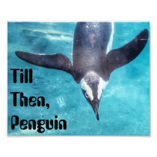 Till Then Penguin Quote Print Photo Print
