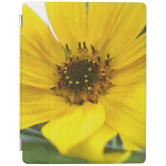Tilted Sunflower iPad Cover