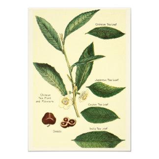 Time for tea invitation with vintage illustration