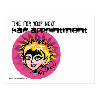 TIME FOR YOUR NEXT HAIR APPOINTMENT ©2009 LT POSTCARD