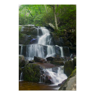 Time Lapse Waterfall Forest Poster