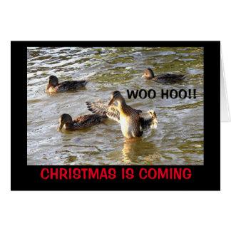 Time To Duck The Halls! Christmas Humor Card