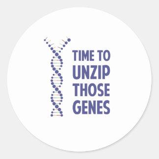 Time To Unzip Those Genetic Genes Round Sticker