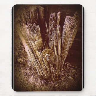 Time Worn Mouse Pad