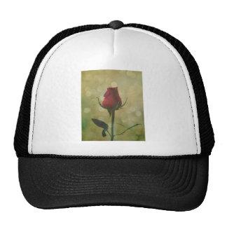 Timeless Love Shared Red Rose Bud Sparkle Trucker Hat