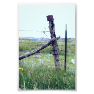 Tin Can on a Post Print