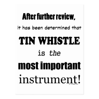 Tin Whistle Most Important Instrument Postcard