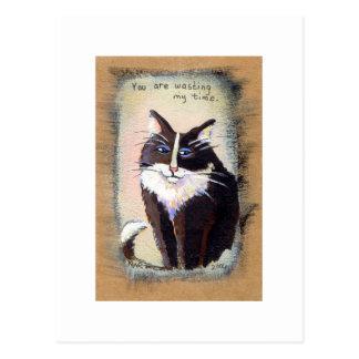 Tiny Art # 303 - Bemused tuxedo cat painting art Postcard