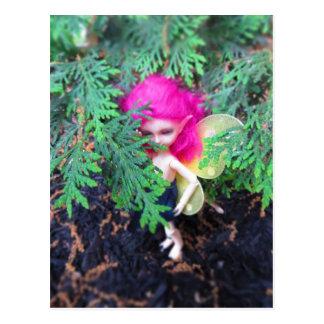 Tiny Bear Bracken, Asian Ball-Jointed Doll Postcard