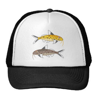 Tiny Catfish Trucker Hat
