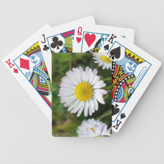 Tiny daisies bicycle playing cards