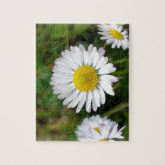 Tiny daisies jigsaw puzzle