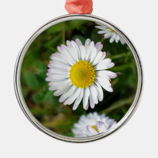 Tiny daisies metal ornament