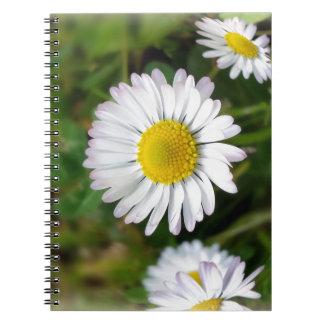 Tiny daisies notebooks