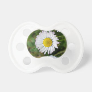 Tiny daisies pacifier