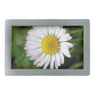 Tiny daisies rectangular belt buckle