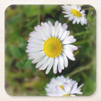 Tiny daisies square paper coaster