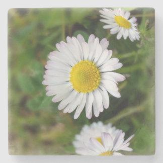 Tiny daisies stone coaster