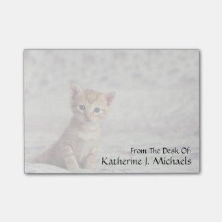 Tiny Ginger Kitten Post-it Notes