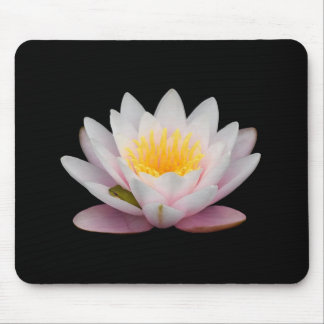 Tiny Green Frog Snoozing on a Lily's Petal Mouse Pad