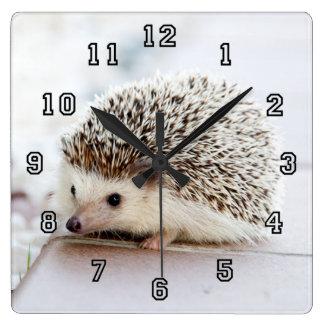 Tiny Hedgehog Wall Clocks