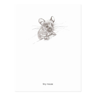 Tiny Mouse Postcard