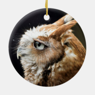 Tiny Owl Ceramic Ornament