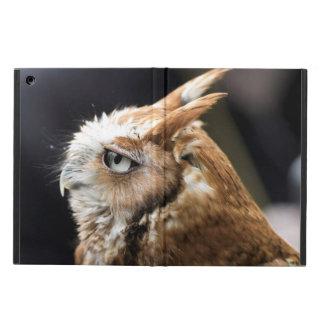 Tiny Owl iPad Air Case