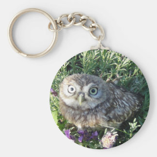 Tiny owl too cute for words basic round button keychain