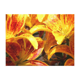Tiny Parrot Lily, Wrapped Canvas Print.